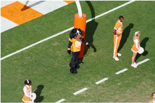 University of Tennessee Mascot Smokey