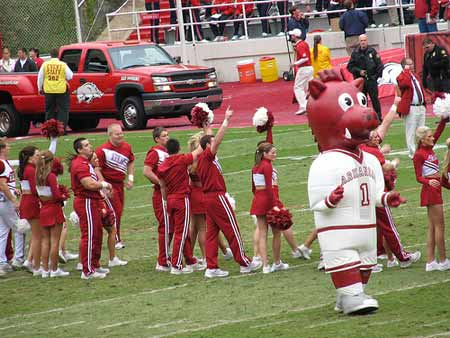 Arkansas Razorbacks Mascot