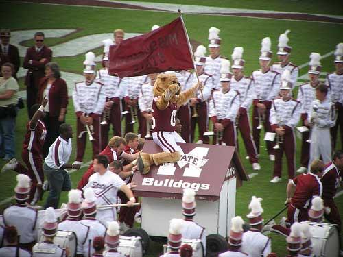 Mississippi State University Mascot Bully.