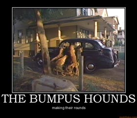 The Bumpus Houinds