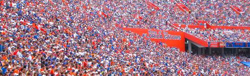 Florida Gators Football Field -- the Swamp