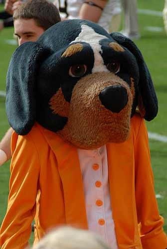Tennessee Smokey mascot